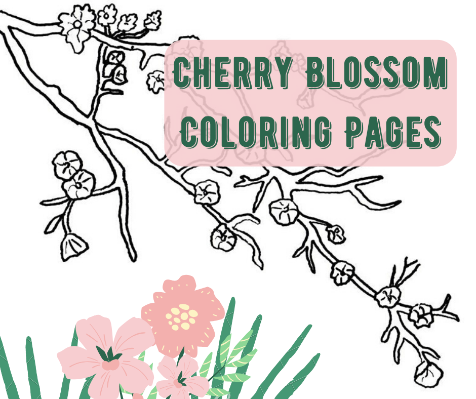 Printable cherry blossom coloring page. Free PDF download at http ... | 788x940