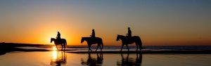 Three people riding horses on the beach