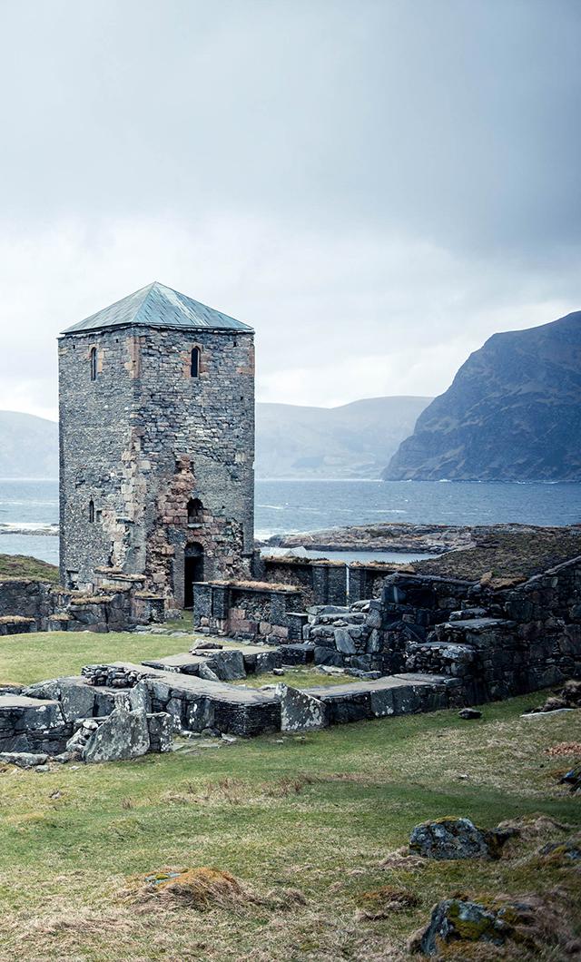 single nordfjordeid