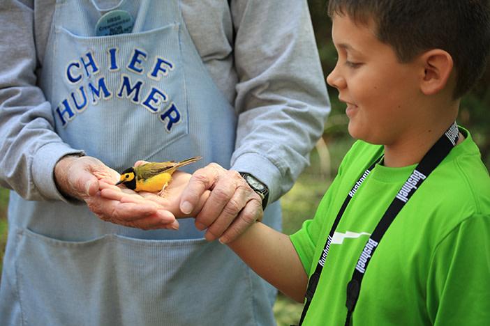 Coastal Alabama Bird Banding Project
