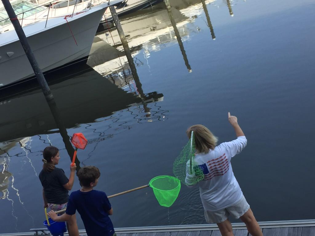 Summer Camps presents: Deep Sea Explorers
