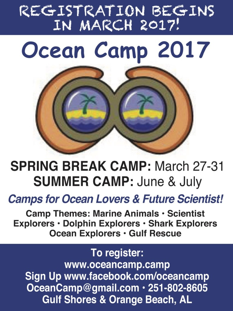 Ocean Camp at Summerchase Condominiums