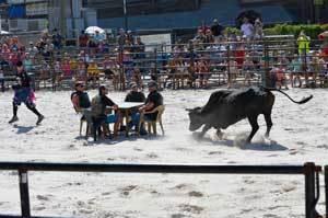 2017 Bulls on the Beach