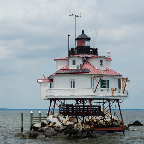 Thomas Point Lighthouse Cruise