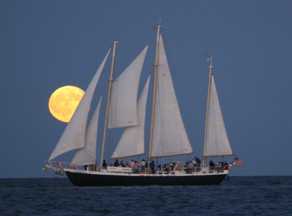 Liberte under full moon