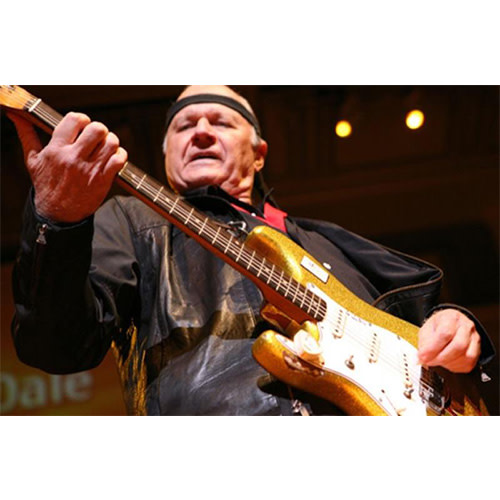 Guitar Legend Dick Dale