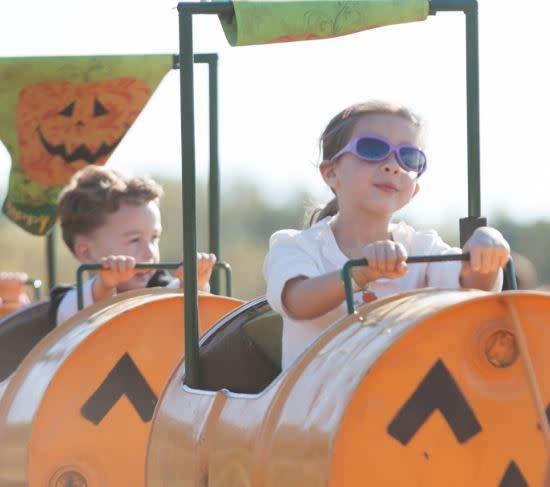 35th Annual Homestead Gardens Fall Festival