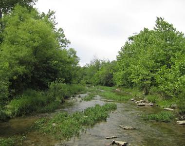 Antenen Nature Preserve River