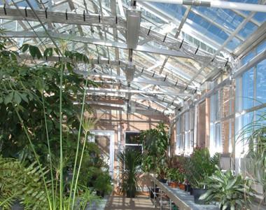 Conservatory Hamilton