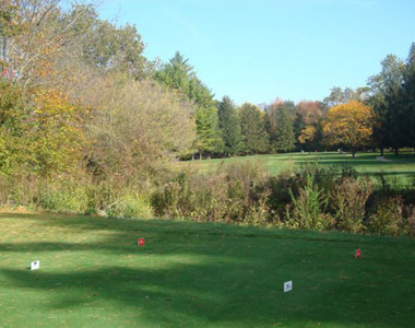 Forest Hills Tee Box
