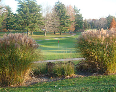 Forest Hills Country Club - Image