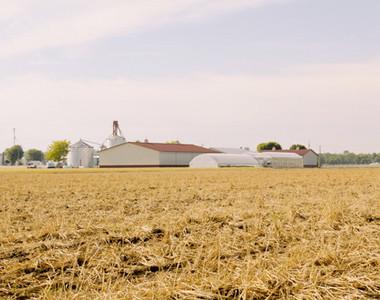 Garver Family Farm Market Field