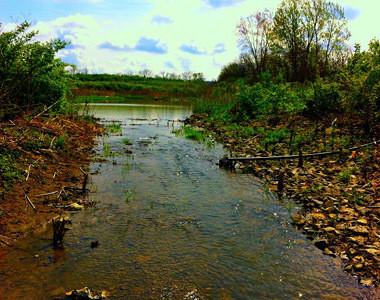 Mill Creek Water