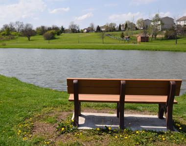 Reserves Park pond