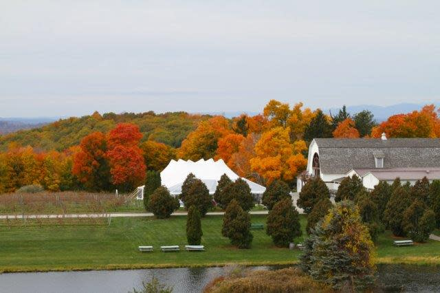 28th Annual Harvest Party at Millbrook Vineyards & Winery