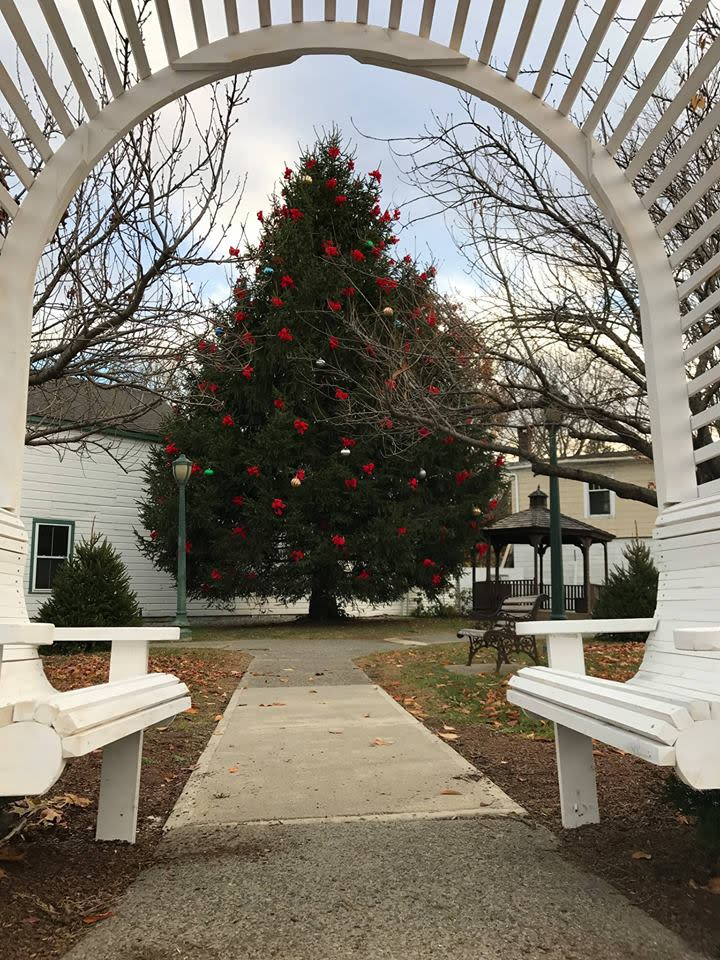 Pine Plains 33rd Annual Town Decorating Day & Parade of Lights