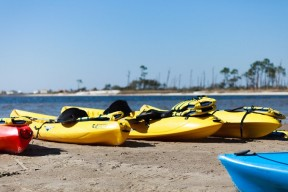 Dauphin Island Kayak & Bicycle Rentals