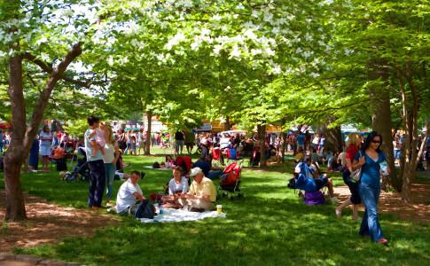Atlanta-Dogwood-Festival-Picnic-Park