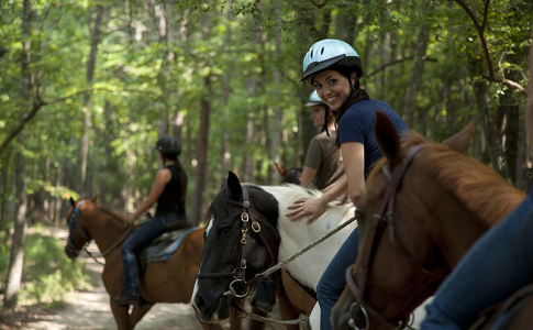 Horseback 2.png