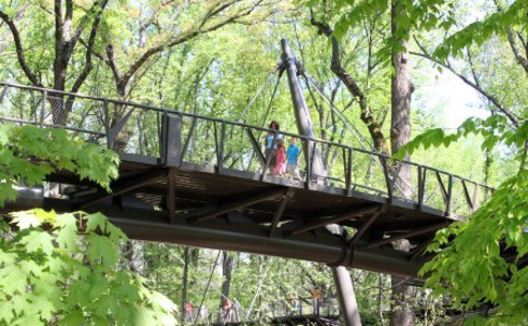 Canopy-Walk-mom-kids