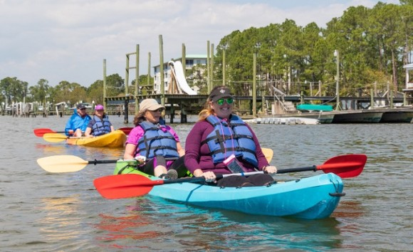 The Dolphin & Wildlife Kayak Experience in Gulf Shores