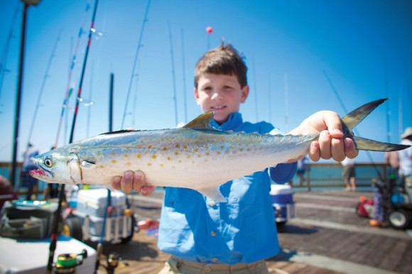 Fins and Family Fishing Charters