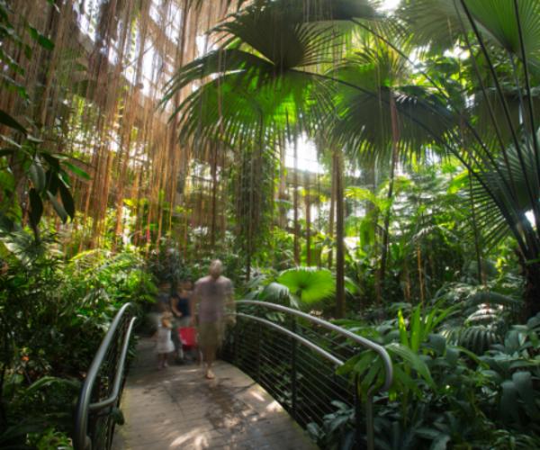 Atlanta Botanical Garden Inc Discover Atlanta