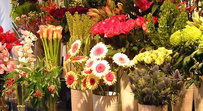 Harrisburg Florist Inc.