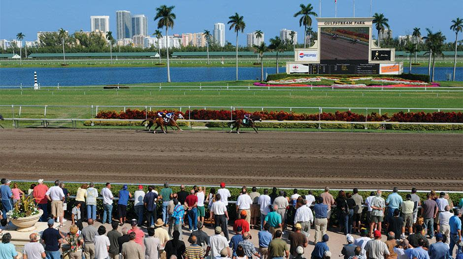 Gulfstream Park Live Video