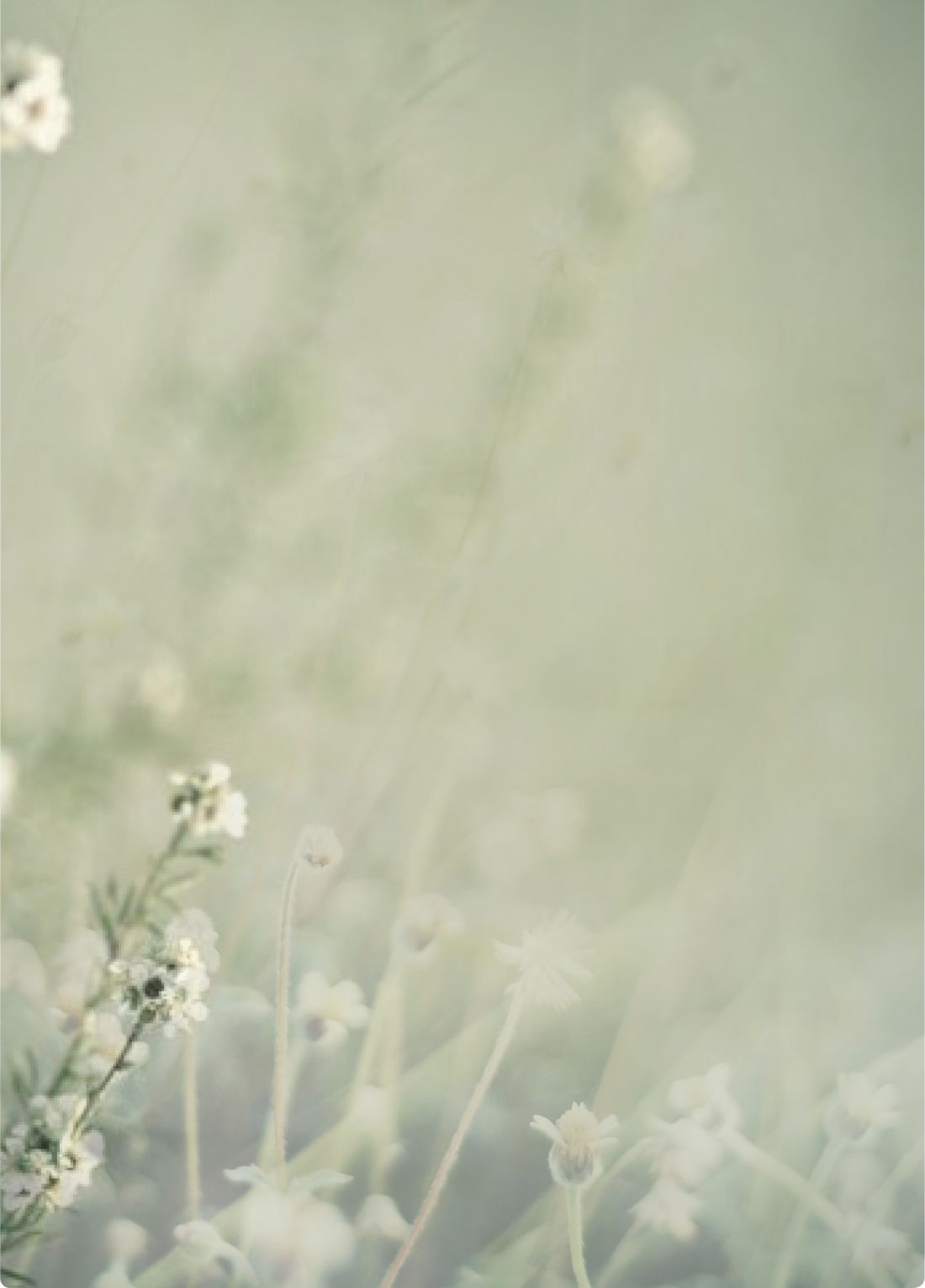 Spa Image-01-01 c1jeio