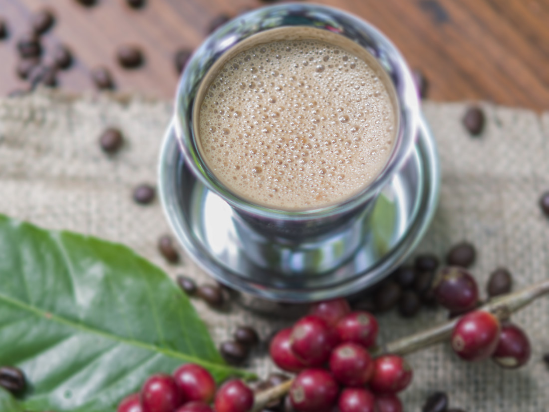 Journey From Bean to Cup, The Serai Chikmagalur, Luxury Resorts in Chikmagalur