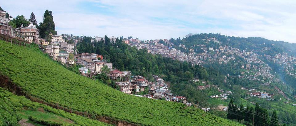 Darjeeling Summit Hotel and Spa