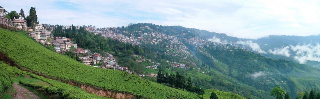 Darjeeling Summit Hotel and