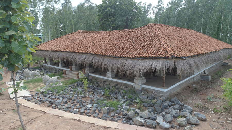 Reception 2, Panna Resort, Tendu Leaf Jungle Resort