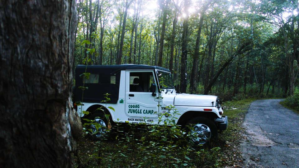Jeep Ride 1