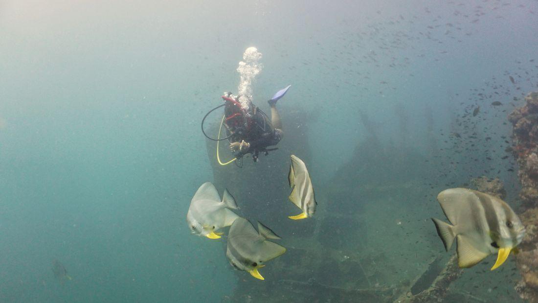 Diving at Inchkeith Wreck Andaman Sea Photo by Rylan Pereira