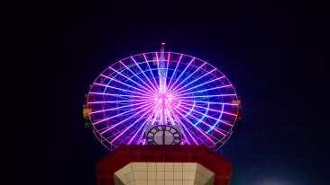 Wonderla Amusement Parks & Resort   60A0879