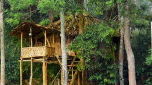 Emarald Wild West Resort, Wayanad Wayanad 5S5A5340