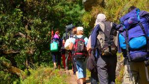 Green Getaway Camps  TREKKING