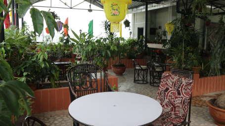 Roof Top Garden at Central Hotel Gangtok