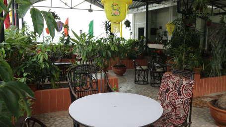 Roof Top Garden at Central Hotel Gangtok