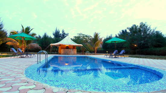 Swimming Pool at Infinity Resorts Kutch, Resort Facilities in Kutch 1
