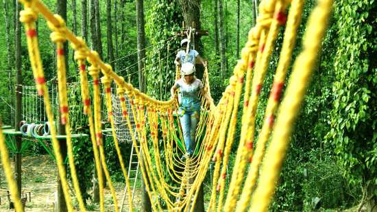 TGI Star Holiday Resort, Yercaud Yercaud High Rope Course TGI Star Holiday Resort Yercaud