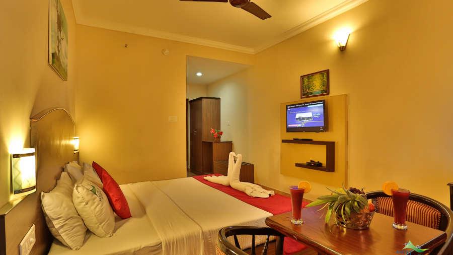 Misty Mountain Resort, Munnar Munnar Valley view room Misty Mountain Resort Munnar 1