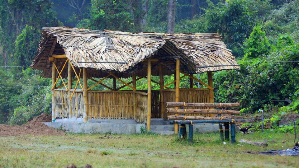 Emarald Wild West Resort, Wayanad Wayanad 5S5A5220
