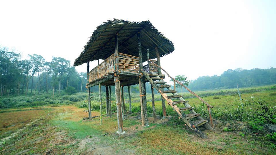 Emarald Wild West Resort, Wayanad Wayanad 5S5A5259