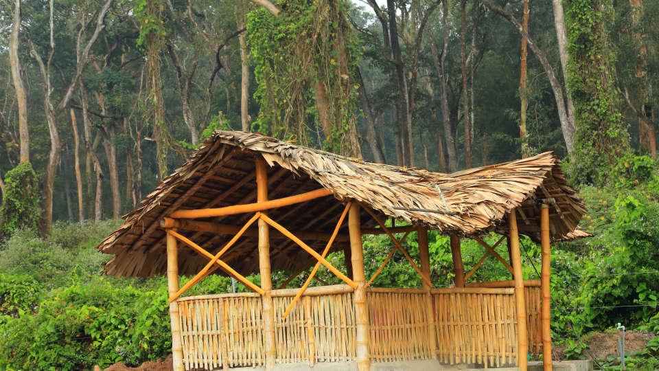 Emarald Wild West Resort, Wayanad Wayanad 5S5A5300
