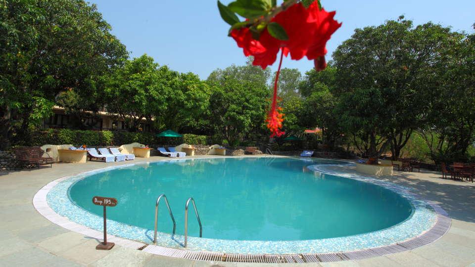 Swimming Pool at Infinity Resorts Corbett, Resort Facilities in Corbett 6