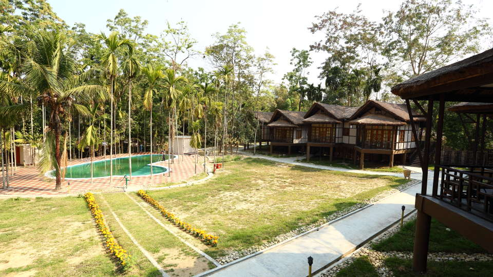 Pool Facing Rooms at Infinity Resorts Kaziranga 7