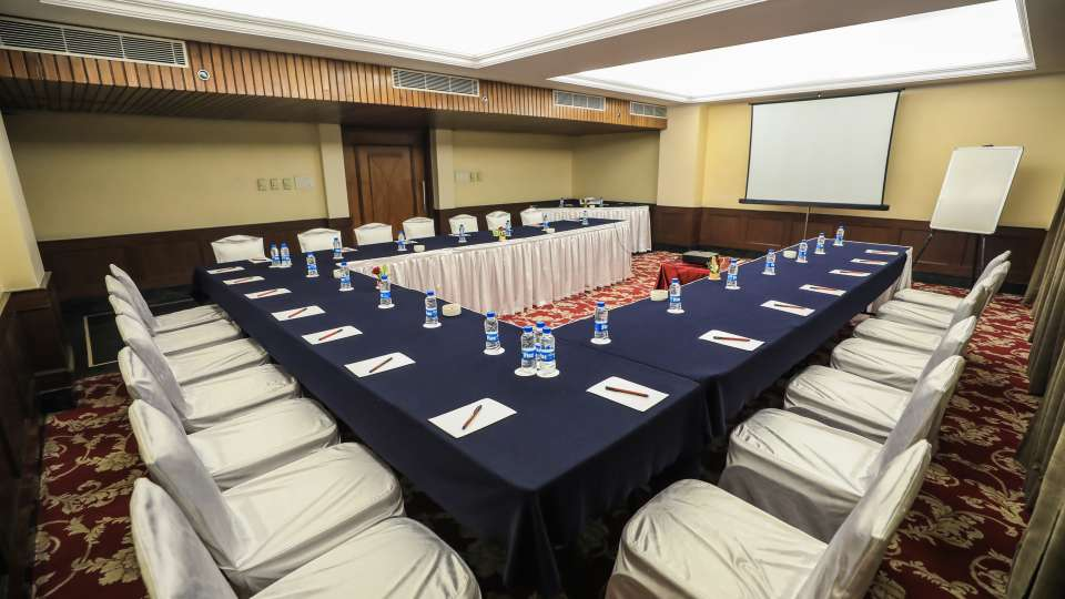 Board Rooms, The Piccadily Lucknow, Conference in Lucknow 8